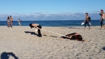elisa and Yidan beach